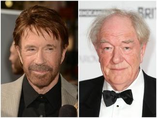 Chuck Norris y Michael Gambon74
