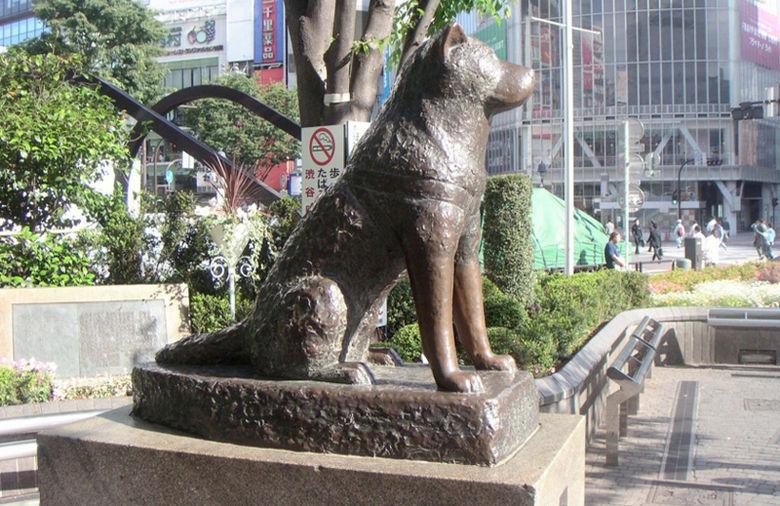 8-Hachiko-Shibuya-Fuente-Colombia-GDA_NACIMA20121220_0257_3