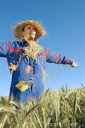 human-scarecrow-284029