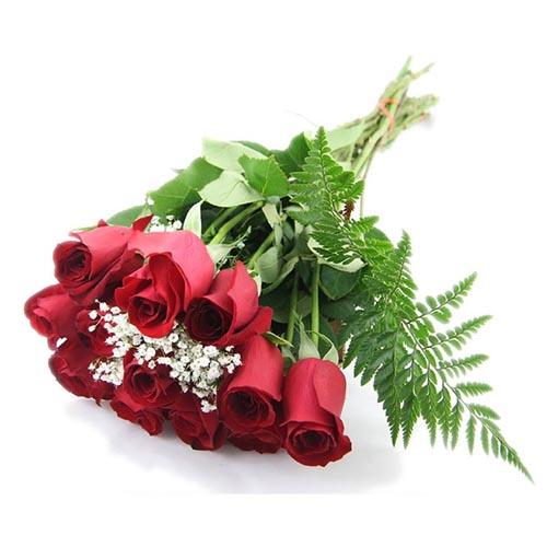 rosas-paniculata