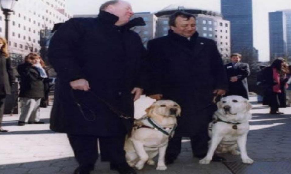La historia de los dos perros guía que salvaron a sus propietarios en el World Trade Center - CABROWORLD