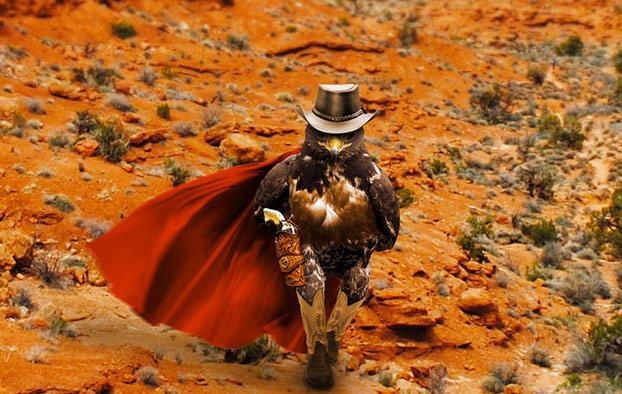 halcon-caminando-photoshop-6