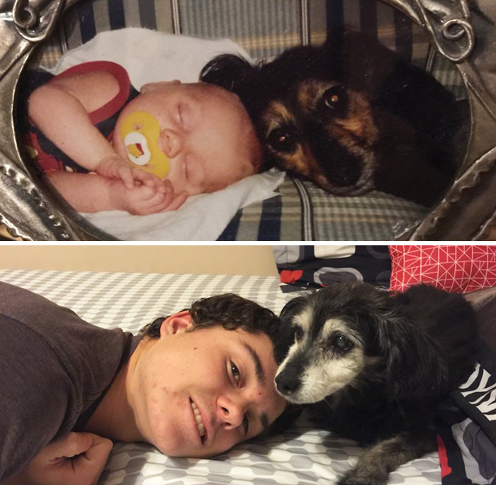 before-after-dogs-growing-up-together-with-owners-17-58256f6f13f4f__700