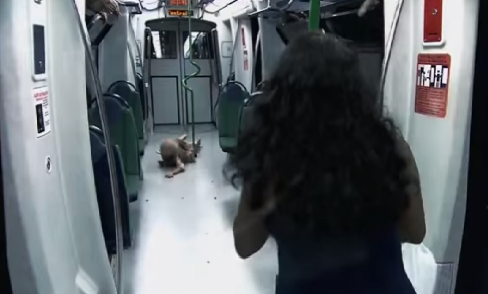 BROMA de TERROR EXTREMA: se para el metro, se apagan las luces y aparecen ZOMBIES ¡No hay salida! - CABROWORLD