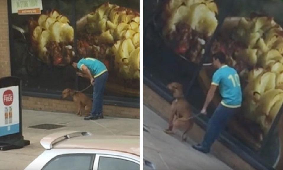 CRETINO da puñetazos a su perro para que se siente. ¡Que todos le vean la cara! - CABROWORLD
