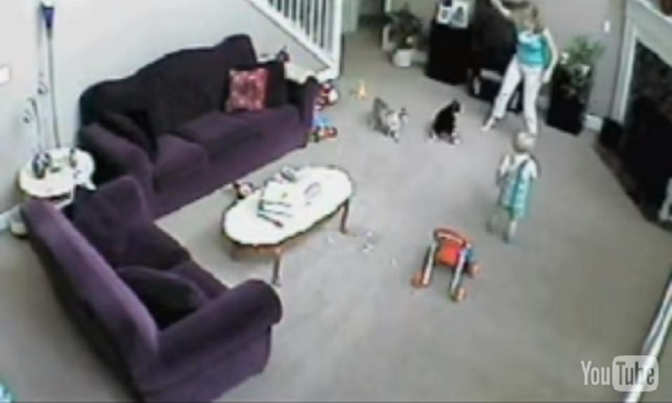 Todo un clásico: ¡El gato que salvó al niño de su torpe niñera! - CABROWORLD