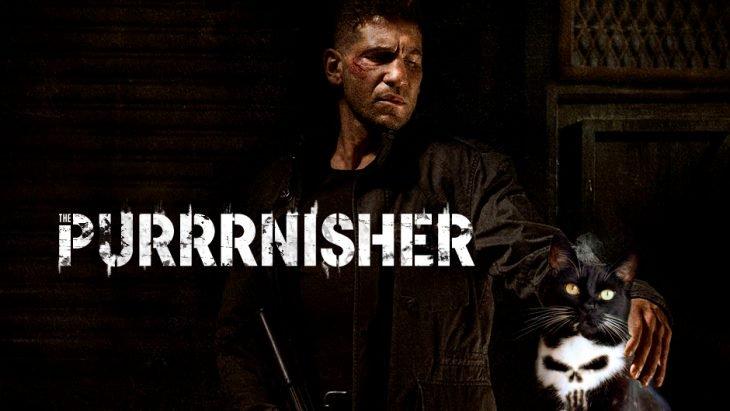 gatopunisher1
