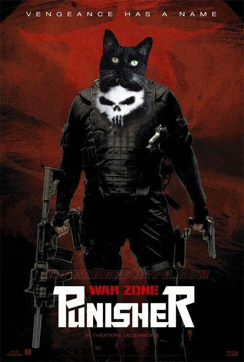 gatopunisher20