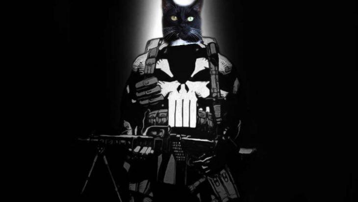 gatopunisher21