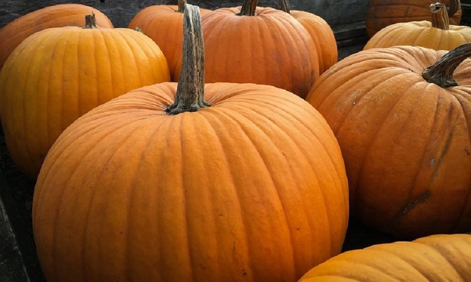 Como Cortar Y Decorar Una Calabaza Para Halloween Sin Hacerte Dano - Como-decorar-una-calabaza-para-halloween
