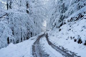 frio_camino
